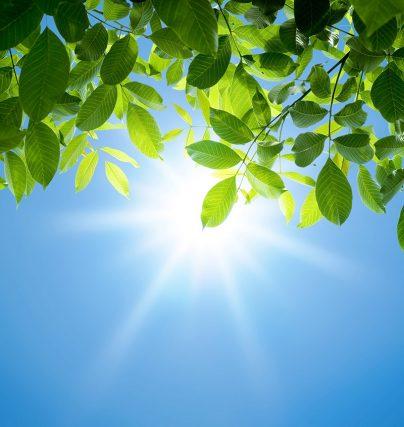 Så får du en soligare sommar - miljöexperterna tipsar!