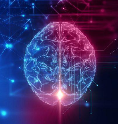 Föreläsningar om hjärnan - stress, arbetsmiljö, arbetsglädje och neuroledarskap.
